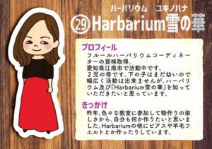 クリエイター29 Harbarium雪の華