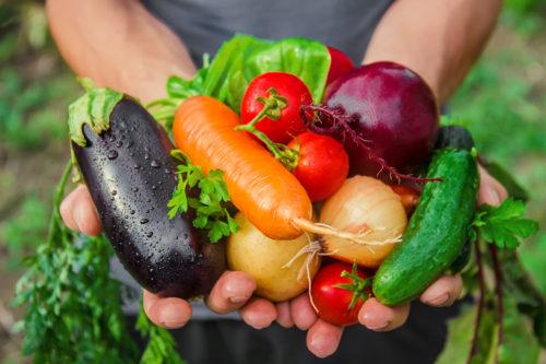 初心者さんでも育てやすい野菜ランキング☆家庭菜園を始めるなら今!
