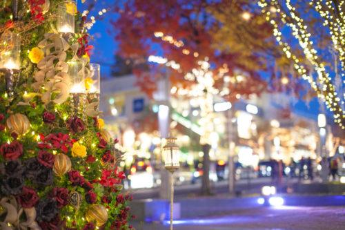 【2021】おすすめのオーナメントでクリスマスツリーを惹きたてる
