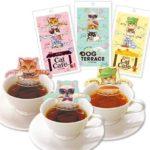 キャットカフェ ティーバッグ 紅茶