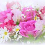 おしゃれなお花がネットで買える♡おすすめの人気フラワーギフトショップ